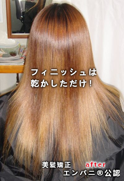 東林間(ひがしりんかん)高難易度縮毛矯正基本攻略美髪矯正シルクレッチ®